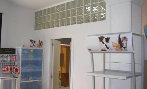 centro veterinario madrid